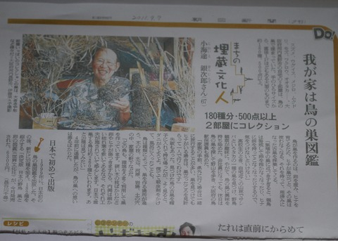 7朝日新聞夕刊