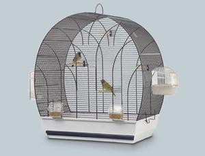 bird cage_03
