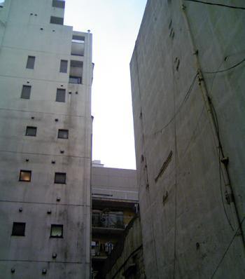 コンクリートジャングル