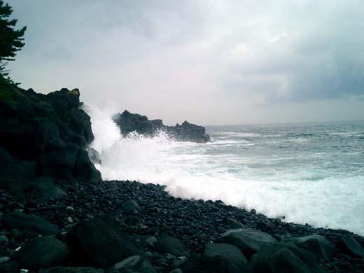 波がシブイ