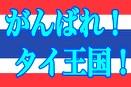 0607flag_thai