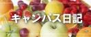 新潟大学キャンパス日記
