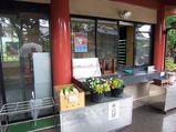 待乳山 聖天 売店
