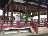氷川神社 巫女さんたち