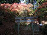 珊瑚寺 稲荷神社