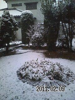 高崎の初雪