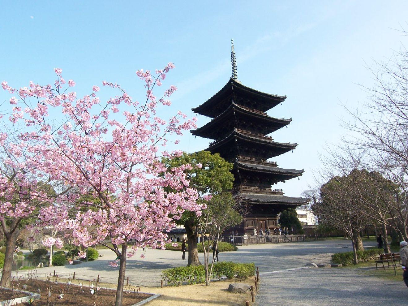 京都の五重塔は4つあります!場所を把握して上手に観光しよう!