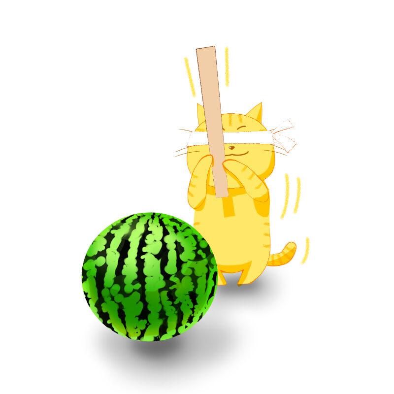 猫とスイカ1