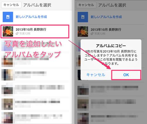 googleplus_iphone_album_07