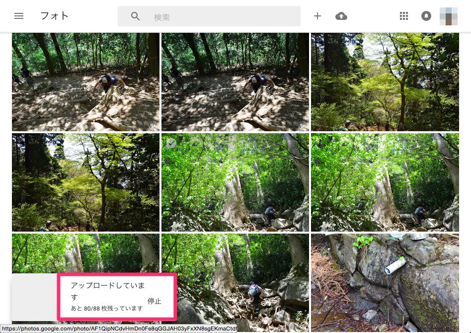 Osx googlephotos album 03