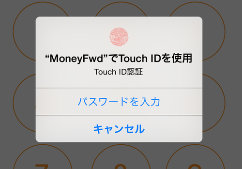 ipone_touchid_add_title