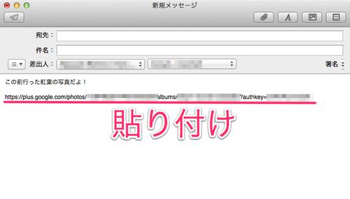 googleplus_album_url_05
