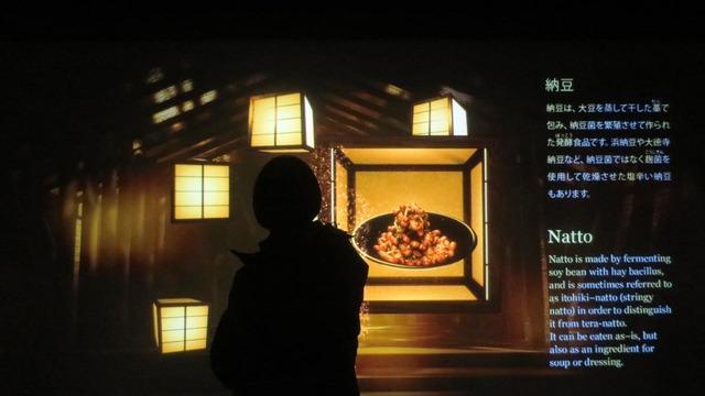 和食の社「発酵」のうち納豆