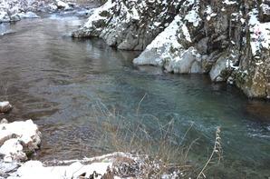 冬の渓流①