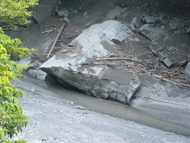 東の河原20110804 003