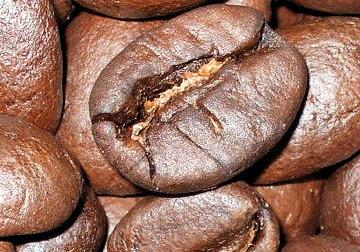 コーヒー豆 南北商品