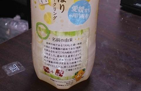 今日の飲み物 河内国(大阪府)でも河内市(ハノイ市)とも関係がなく、熊本県熊本市河内町に由来する果物を使った「河内晩柑しぼりスパークリング」はスッキリ美味しい