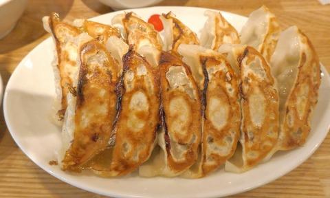 神田西口商店街でコスパ良く餃子定食が楽しめる「ぎょうざいってん 神田本店」まとめページ!