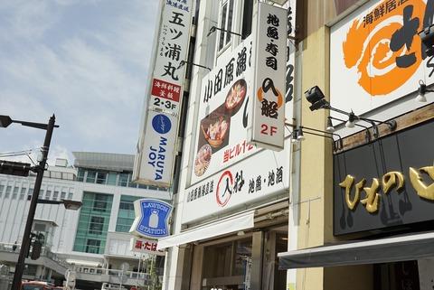 たまに行くならこんな店 小田原駅前の「入船 小田原駅前店」で、新鮮かつ青魚ならではの美味しさがまるごと楽しめる「生しらす丼」を食す!