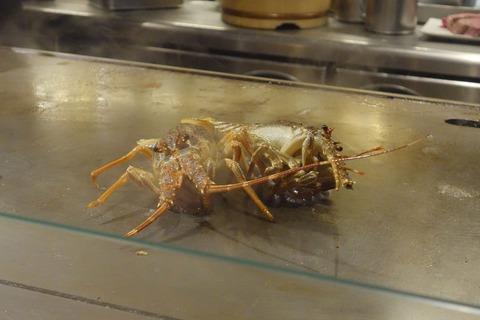 たまに行くならこんな店 渋谷道玄坂のホテル街真っ只中にある「鉄板焼 天 渋谷店」では、豪華食材を美味しく焼き上げた鉄板焼きがしっかり楽しめます