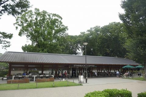 たまに行くならこんな店 上野恩賜公園ド真ん中な「スターバックスコーヒー 上野恩賜公園店」で、甘くスパイスの香りに満ちた「アイスチャイラテ」を飲み干す!