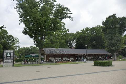 たまに行くならこんな店 上野恩賜公園ド真ん中な「スターバックスコーヒー 上野恩賜公園店」で、キレの良い苦味が心地よい「コールドブリューコーヒー」を堪能しました!