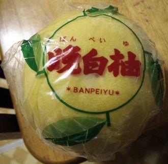 気になる果物晩白柚(ばんぺいゆ)