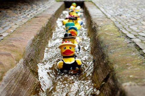 rubber-duck-bath-duck-toys-costume-106144