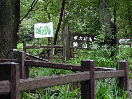 緑地入口②