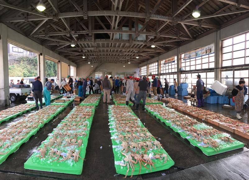 貴重なかに「間人蟹」と「日本海の刺身」も堪能できるプランとは?