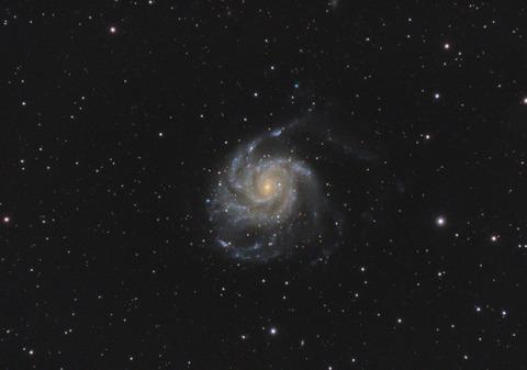 M101_crop