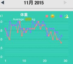2015,11月の体重