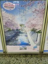 桜が咲けばこんな感じかな