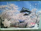 毎年恒例の弘前城の広告