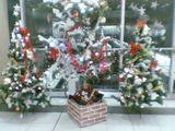 大崎駅にもクリスマスツリーがお目見え