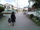 近所をお散歩