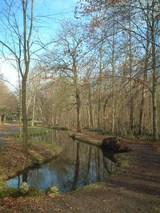 ブローニュの森 2