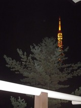 夜東京タワー