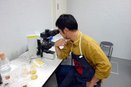 顕微鏡をのぞく麦酒男