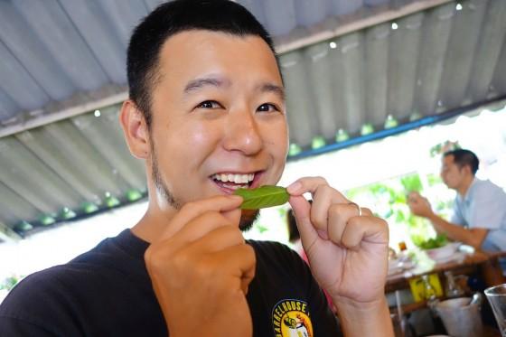 葉っぱを食べる