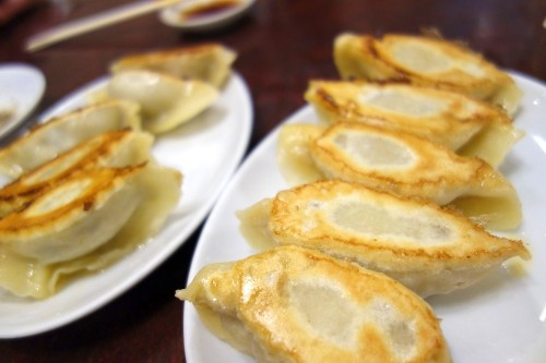 ホルモン焼餃子&ザーサイ焼餃子