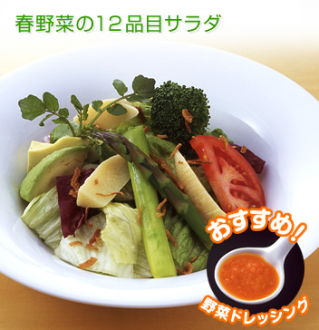 salad_soup_side-100309-004_l