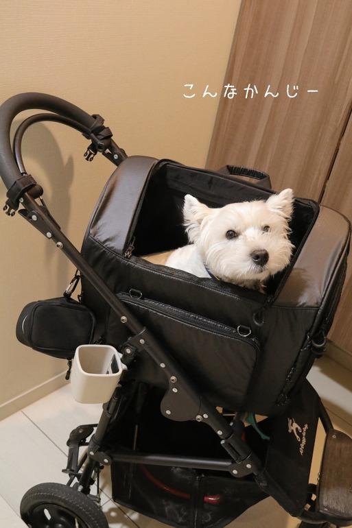 【妄想】少し大きい犬が新幹線に乗る方法を考える