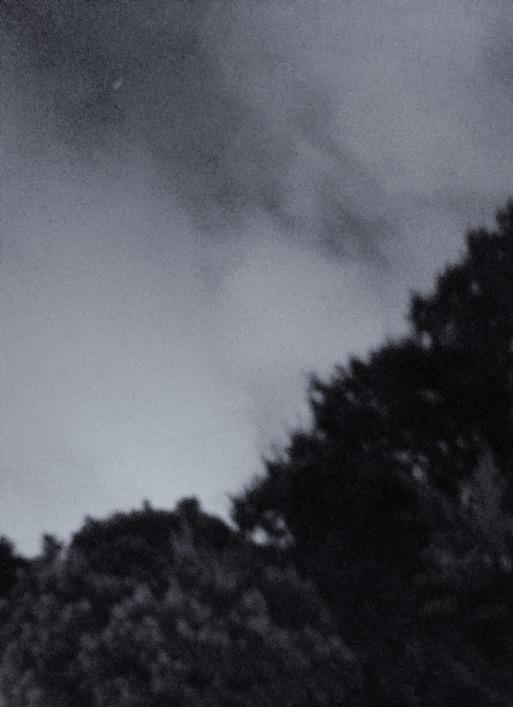 【日記】台風の日。出勤です。