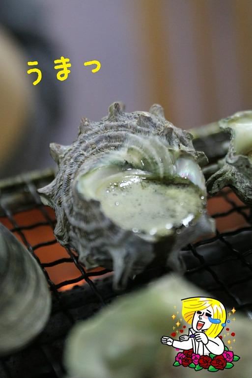 【犬旅】漁師料理たてやま