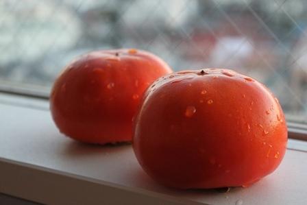 柿 アグリマート