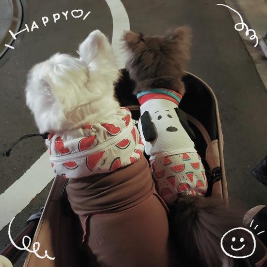 【犬&日記】おそろ と マスク便利グッズ