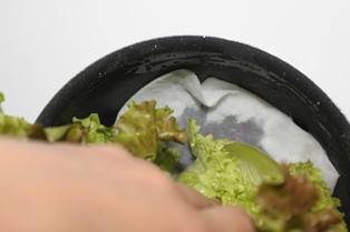 たかシェフのおうちごはん。-野菜の保存 たかシェフ野菜の保存 たかシェフ