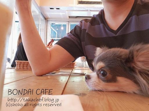 【カフェ】ボンダイカフェ物語。