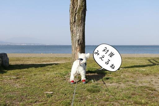 【琵琶湖の旅】琵琶湖ちっちゃい説